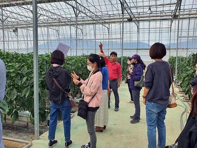 청년들아! 모여라_ 통영농업 바로알기 프로그램 진행-농가방문.jpg