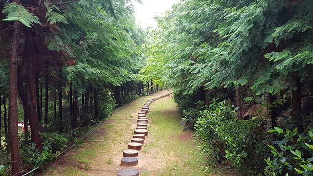 7.1 - 통영의 정원, 힐링 휴양지로 떠나보세요(나폴리농원).jpg