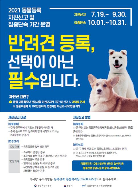 7.9 - 통영시, 반려견 등록 자진신고기간 운영.png